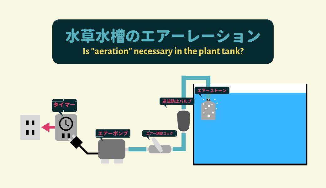 【必ず必要?】水草水槽のエアーレーション ー油膜とCO2中毒の予防ー