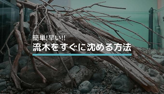 【簡単!早い!】流木をすぐに沈める方法