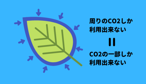水草は葉の周りのCO2しか利用できない