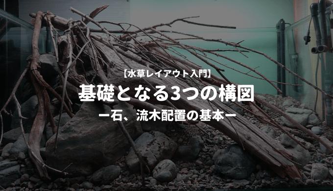 【水草レイアウト入門】基礎となる3つの構図 ー石、流木配置の基本ー