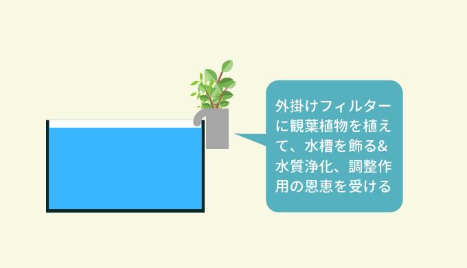 外掛けフィルターに観葉植物を配置