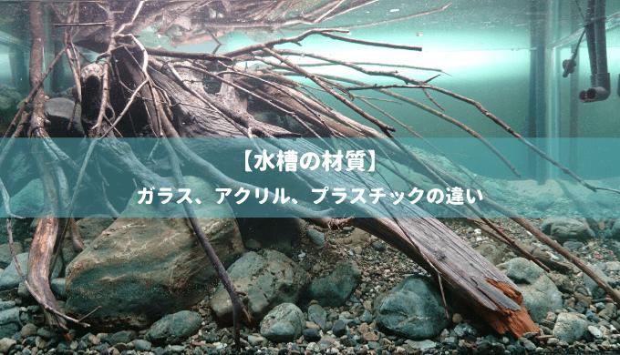 【水槽の材質】ガラス、アクリル、プラスチックの違い