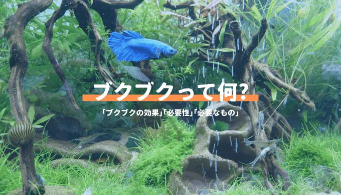 ブクブクって何? 金魚、熱帯魚を飼うのに絶対必要なの?