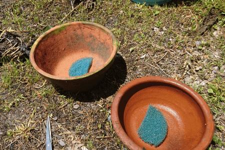 植木鉢を用意