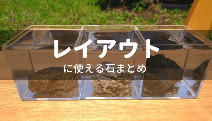 水槽レイアウトに使う石まとめ 「石一覧」「水質変化」「加工のしやすさ」