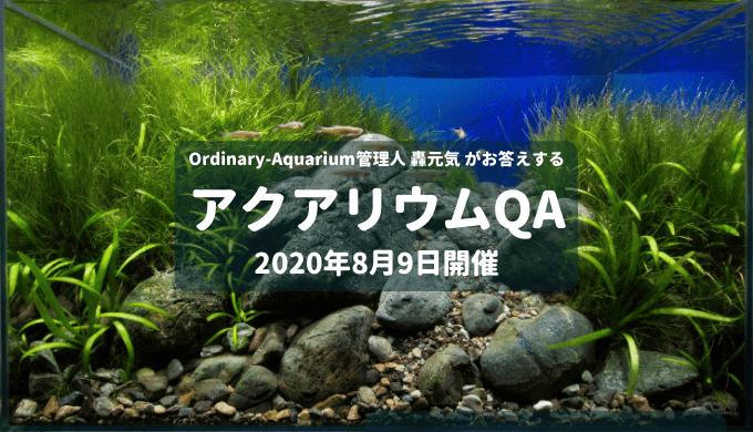 2020年8月9日開催 アクアリウムQA