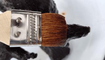 木酢液を塗る