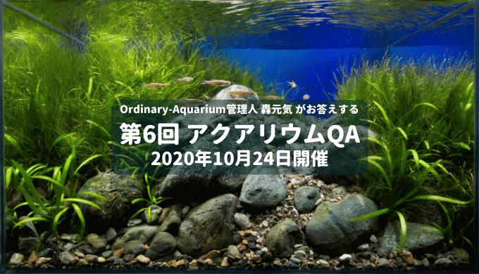 第6回 アクアリウムQA 2020年10月24日開催