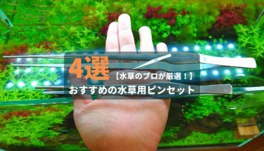 【水草のプロが厳選!】本当に使いやすいおすすめの水草用ピンセット4選