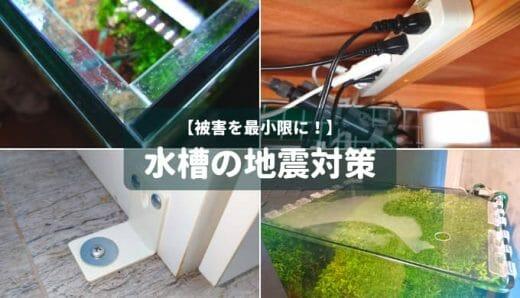 【被害を最小限に!】水槽の地震対策